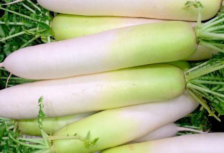 尿酸値を下げる食べ物一覧!食材・食品・食生活改善_尿酸値7~8~9以上_大根