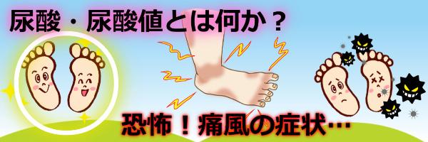 尿酸値とは何か?恐怖!痛風の症状尿酸値7~8~9以上健康診断体験談